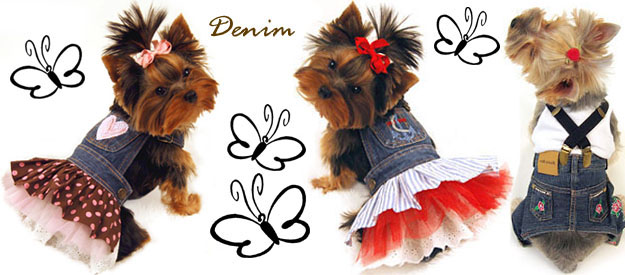 Female Dog Outfits photo - 2