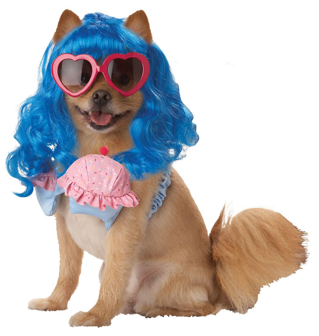 Female Dog Outfits photo - 3