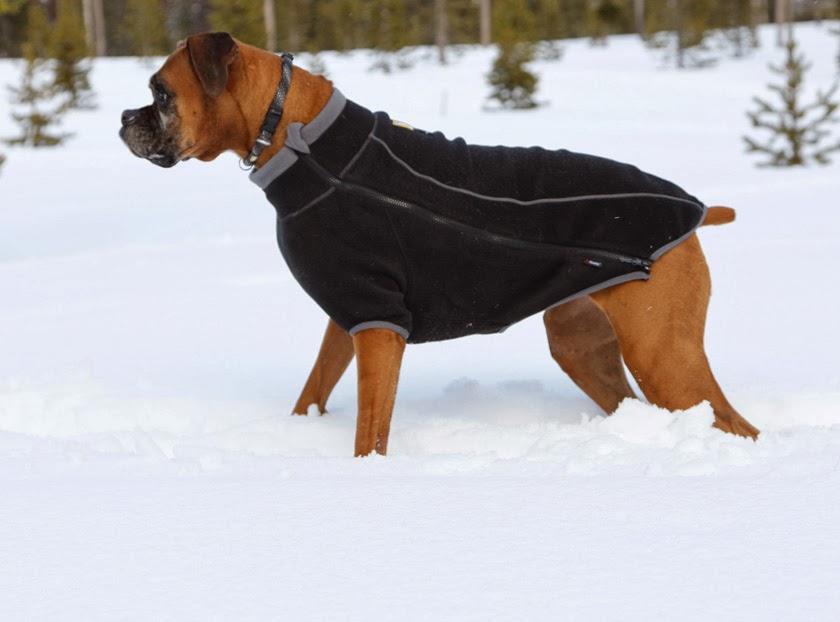 Fleece Dog Coats For Winter photo - 1