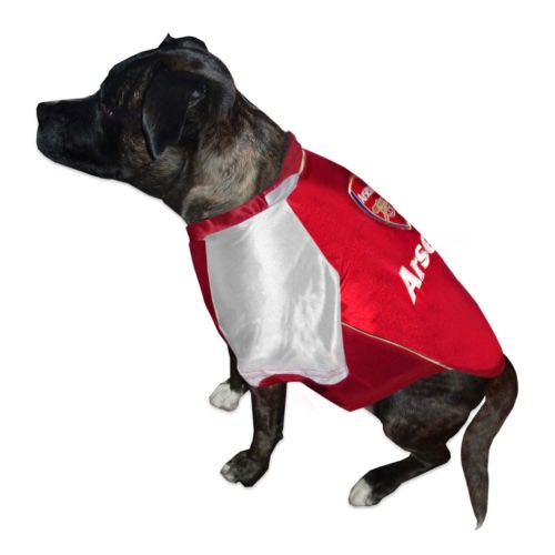 Football Dog Coats photo - 1