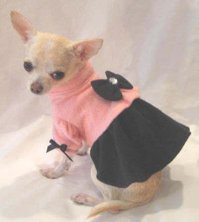 Girly Dog Clothes photo - 1