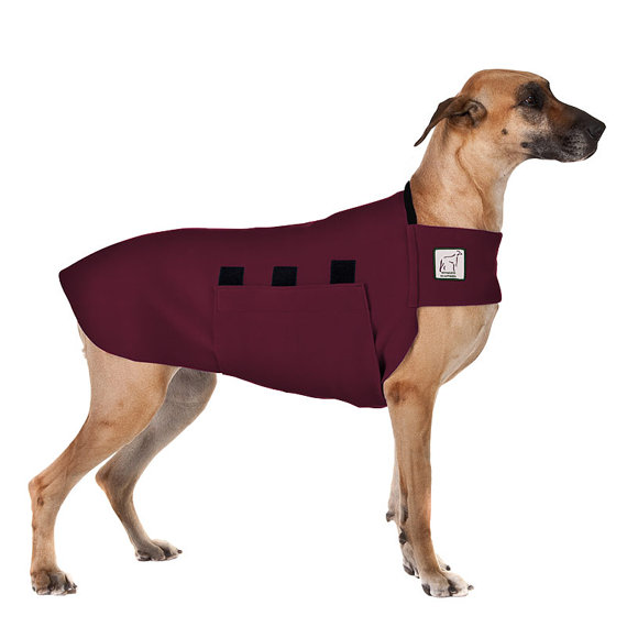 Great Dane Sweaters For Dogs photo - 3