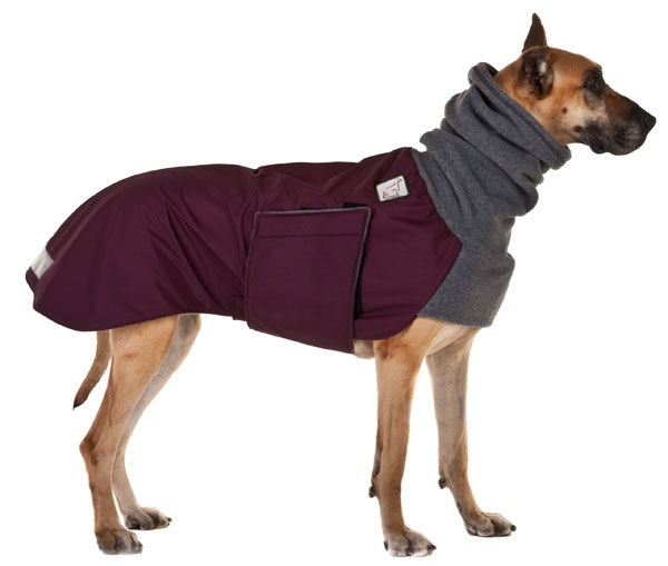 Great Dane Winter Coats photo - 1