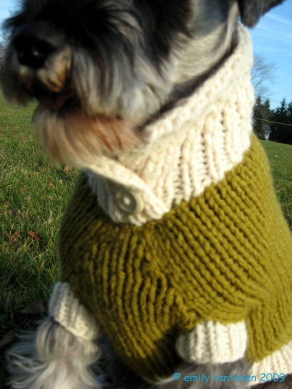 Green Dog Sweater photo - 2