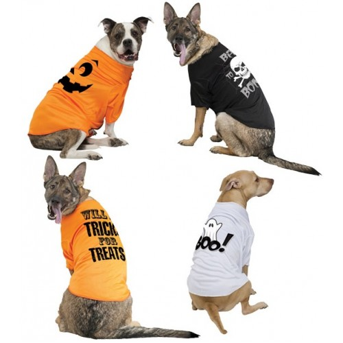 Halloween T Shirts For Dogs photo - 1
