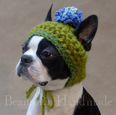 Hats For Dogs photo - 1