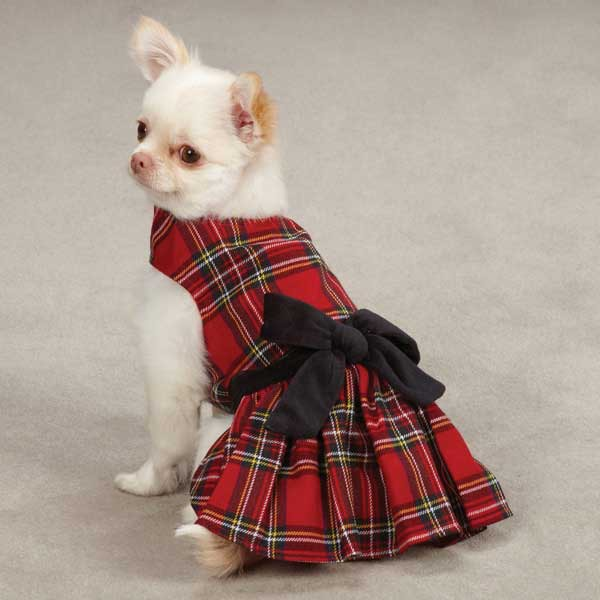 Holiday Dog Dresses photo - 1