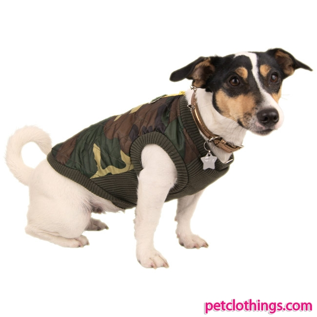 Jacket For Dog photo - 1