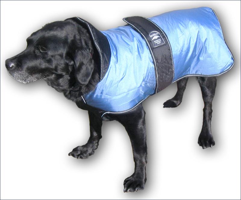 Labrador Coats photo - 1