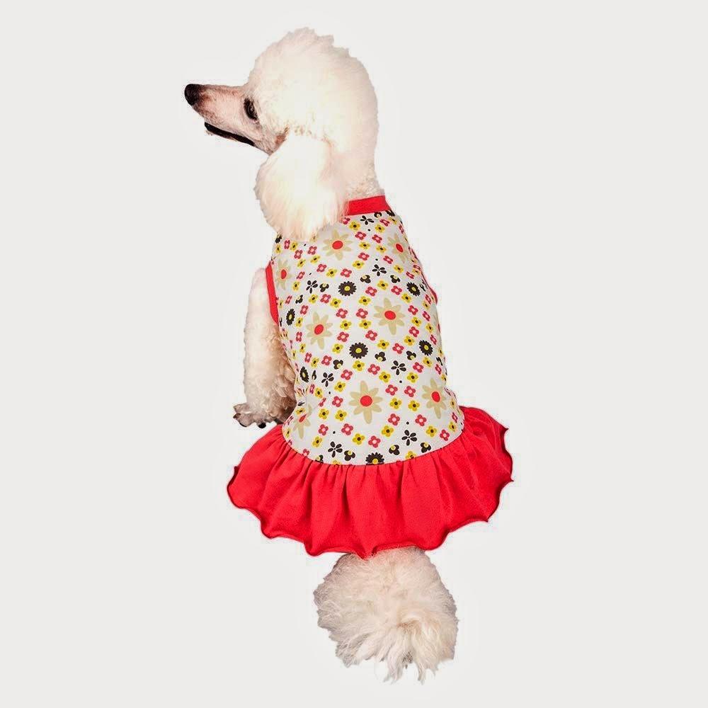 Large Breed Dog Clothes photo - 1