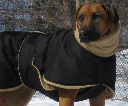 Large Dog Coats Winter photo - 1