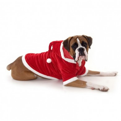 Large Dog Santa Outfit photo - 1
