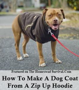 Make A Dog Coat photo - 1