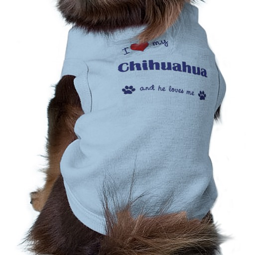 Male Chihuahua Clothes photo - 1