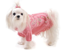 Maltese Dog Clothes photo - 1
