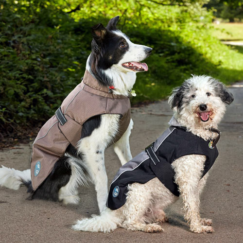 Outdoor Dog Jackets photo - 1