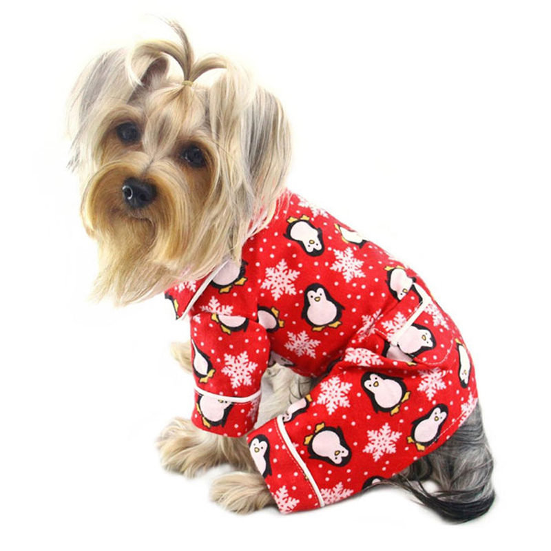Pajamas Dog photo - 1