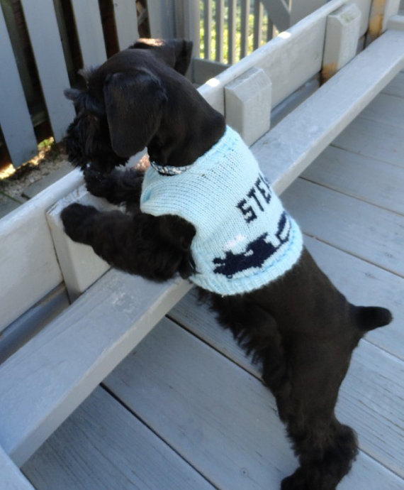 Personalized Dog Sweaters photo - 2