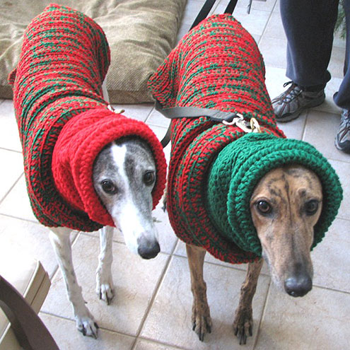 Pet Christmas Sweaters photo - 1