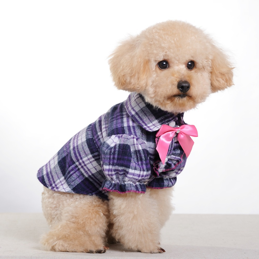 Pet Clothes For Small Dog photo - 1