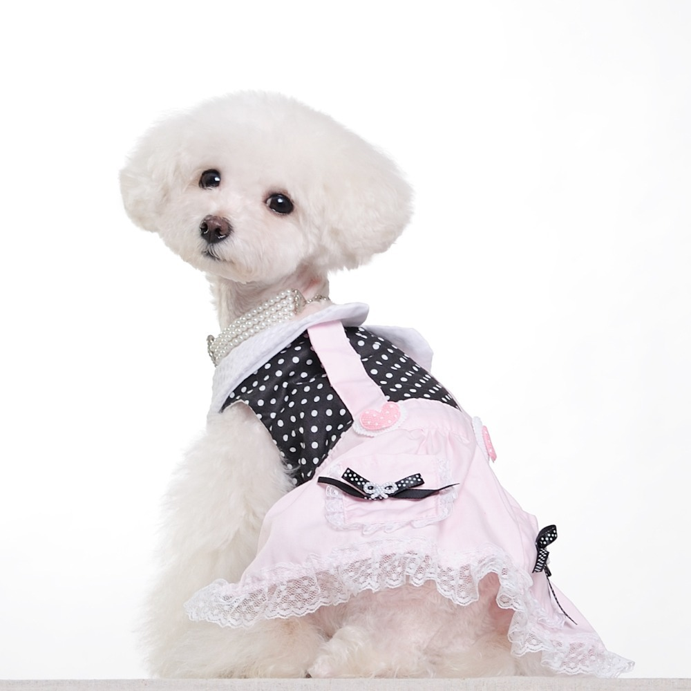 Pet Clothing photo - 3