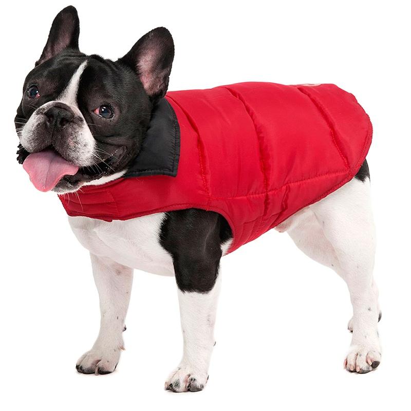 Pet Coats photo - 1