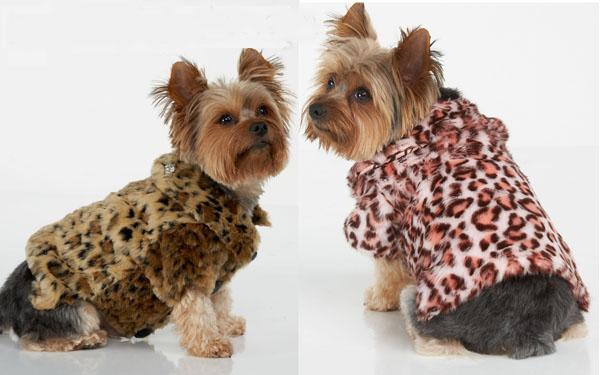 Pet Coats For Winter photo - 1