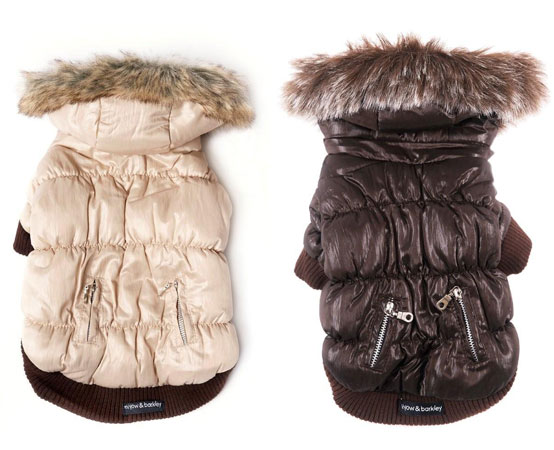 Pet Coats For Winter photo - 2