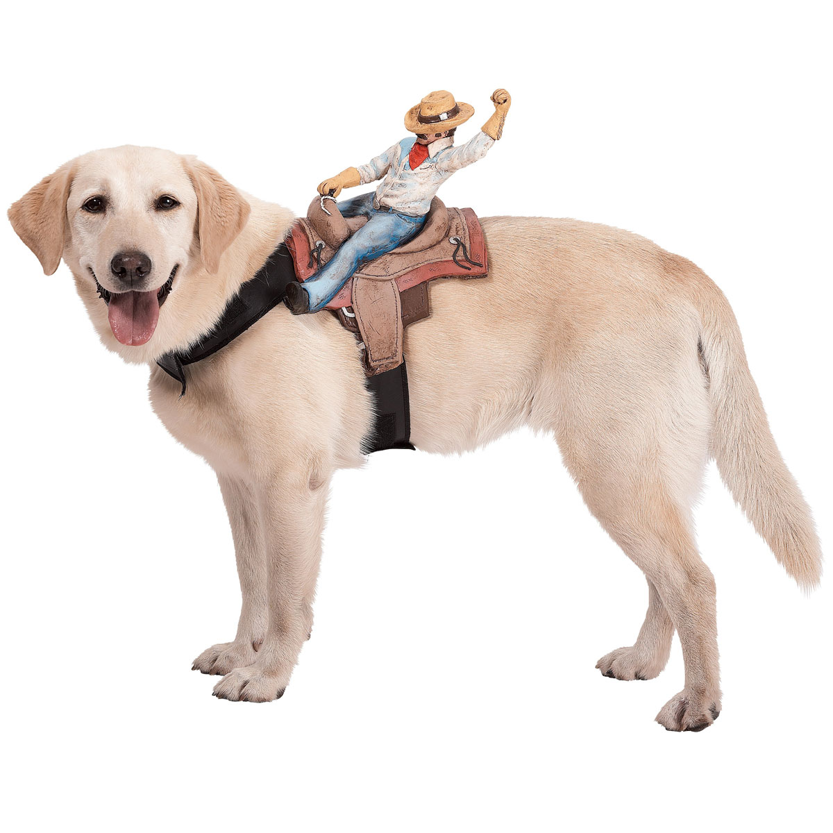 Pet Costumes For Dogs photo - 3