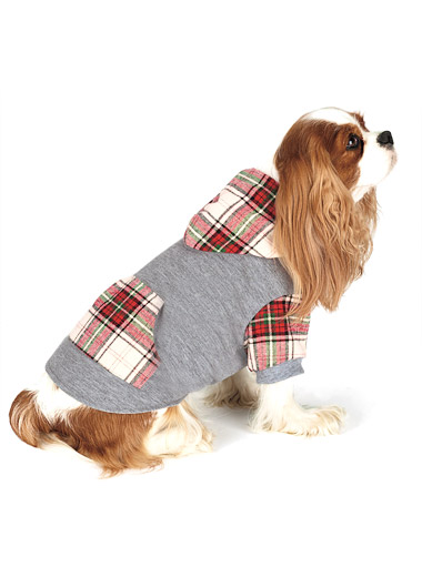 Pet Hoodie photo - 2