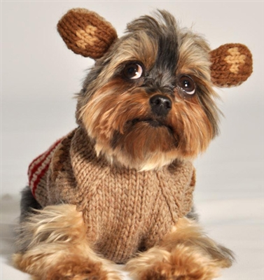 Pet Sweaters For Small Dogs photo - 2