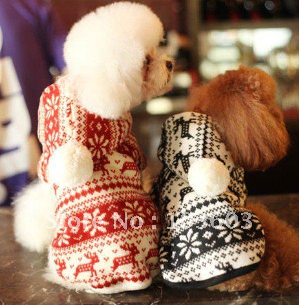 Pet Winter Clothes photo - 3