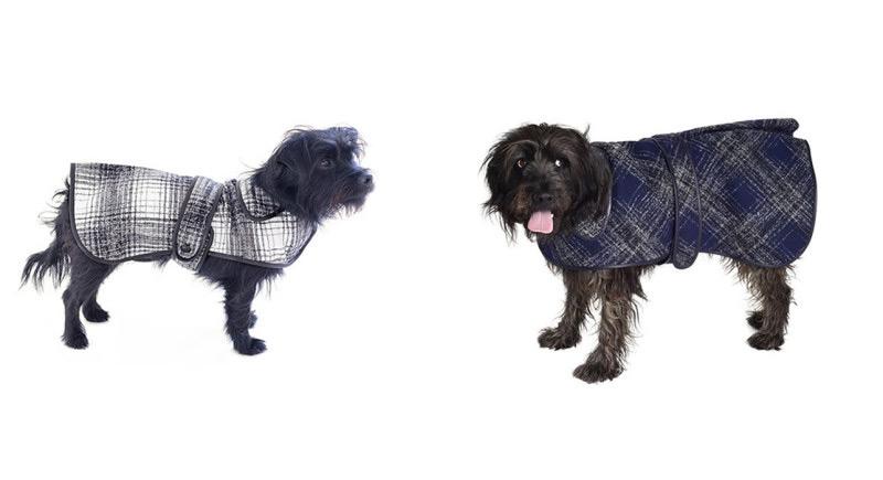 Pet Winter Coats photo - 1