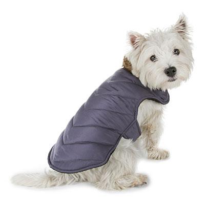 Pet Winter Coats photo - 3