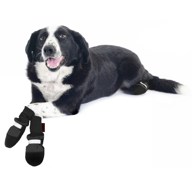 Petco Dog Booties photo - 1