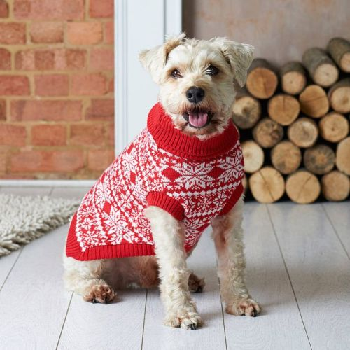 Pets At Home Dog Jumpers photo - 1