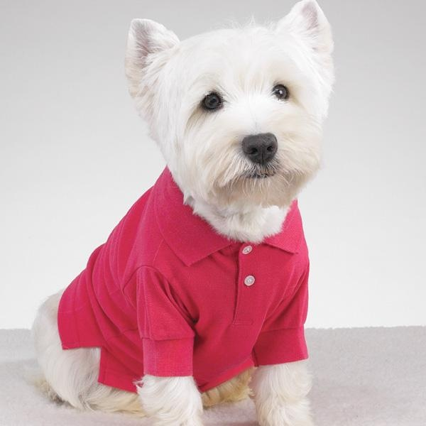 Pink Dog Shirt photo - 3