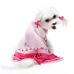 Pink Dog Sweaters photo - 3