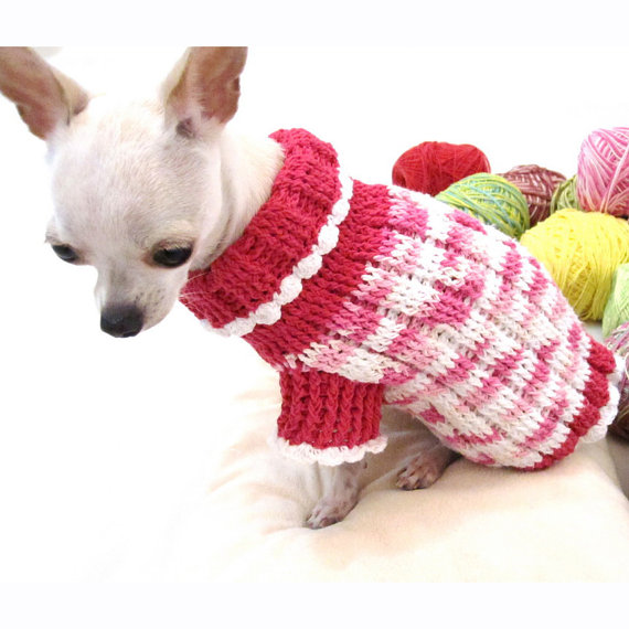 Pink Puppy Clothes photo - 3