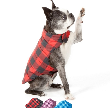 Plaid Dog Jacket photo - 1