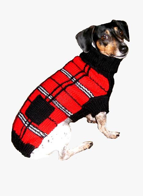 Plaid Dog Sweaters photo - 2