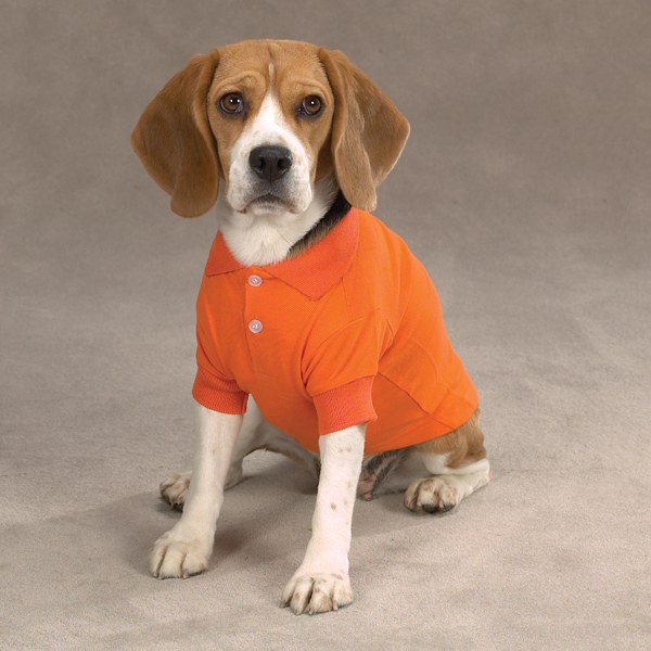 Polo Shirt For Dogs photo - 1