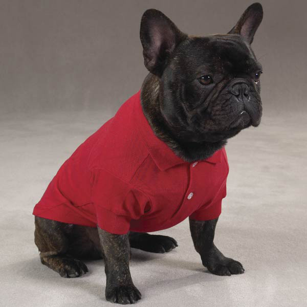 Polo Shirt For Dogs photo - 2