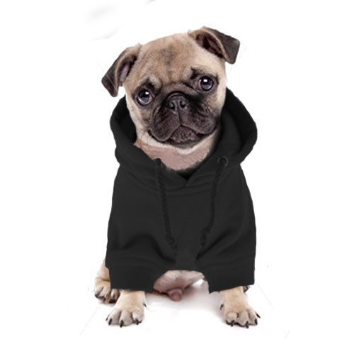 Pug Hoodies For Dogs photo - 1