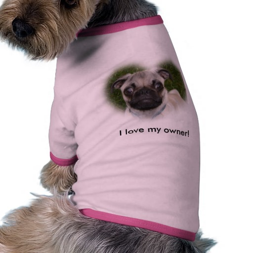 Pug Puppy Clothes photo - 3