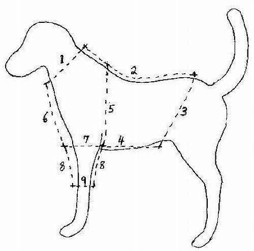 Puppy Clothes Patterns | Dress The Dog - clothes for your pets!