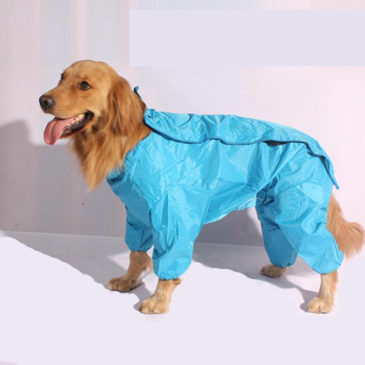 Raincoat Dog photo - 3