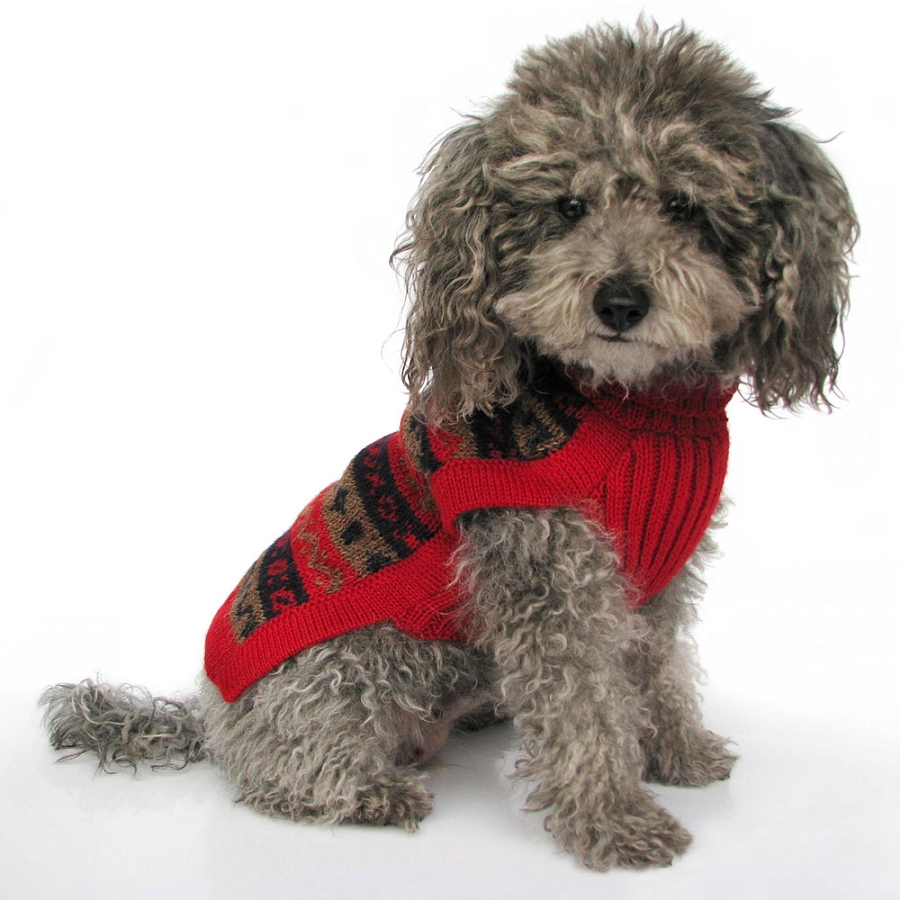 Red Dog Sweater photo - 3
