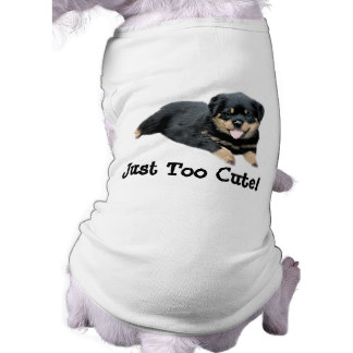 Rottweiler Clothes photo - 1
