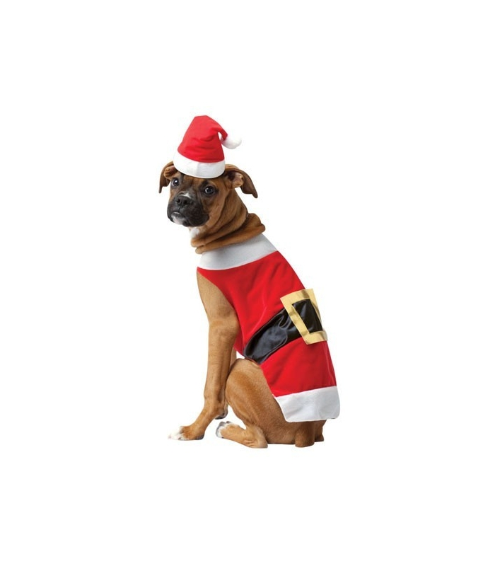 Santa Suit For Dogs photo - 1